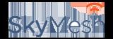 Skymesh Logo